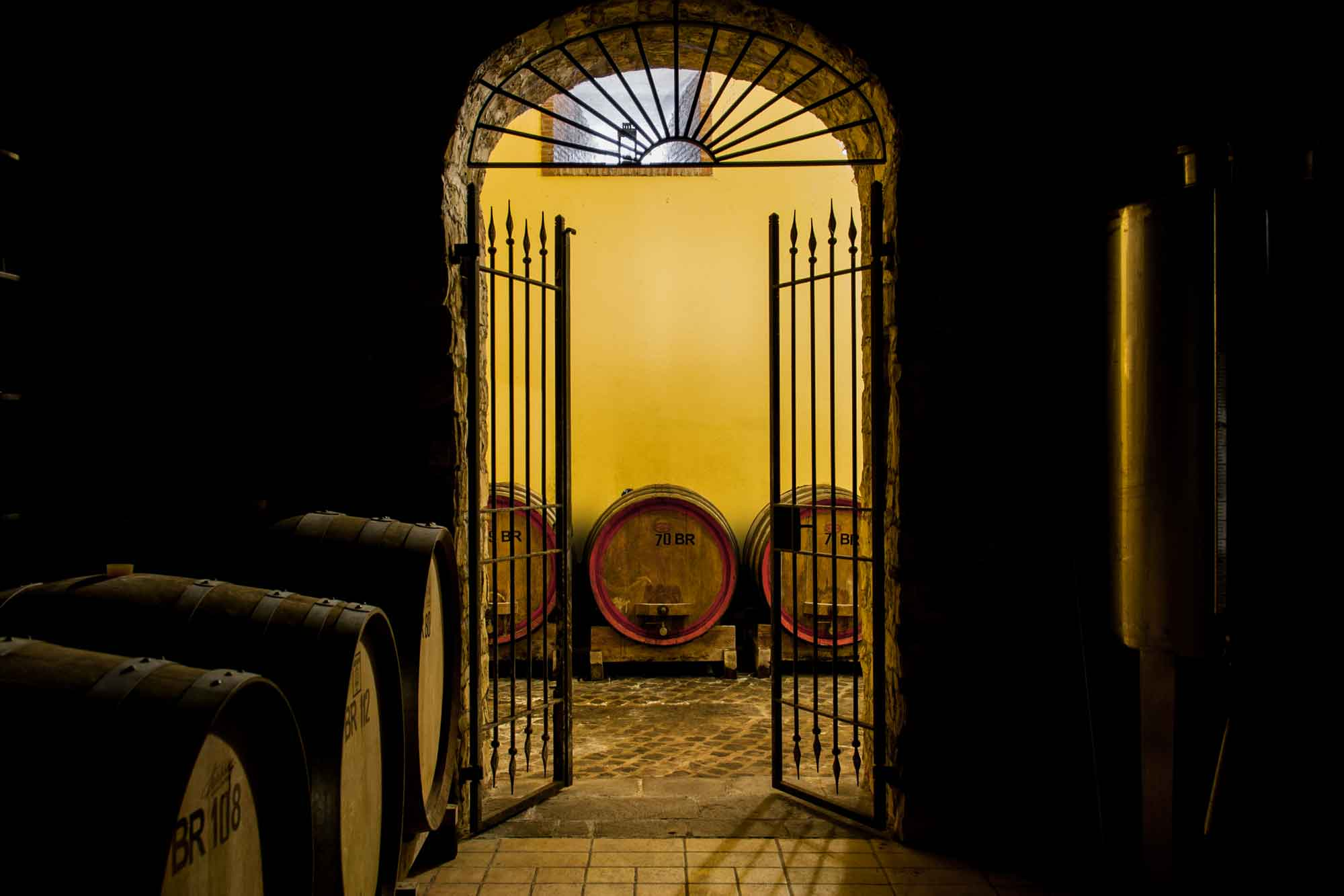 The Barrel Room of Cantine Astroni